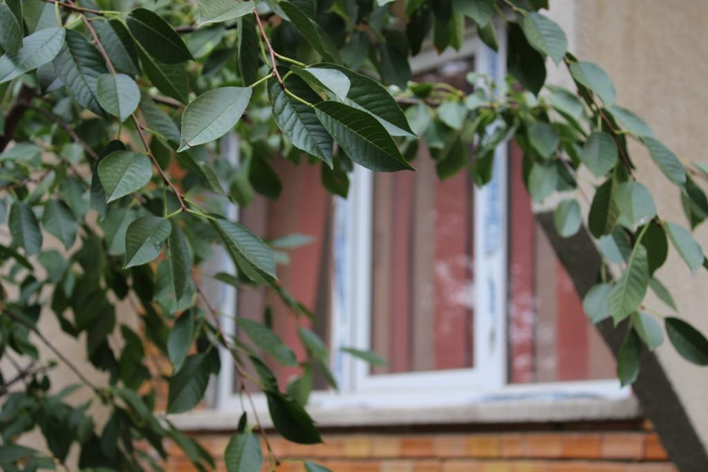 Vandut Apartament 3 camere - Strada Panait Cerna, Cernavoda